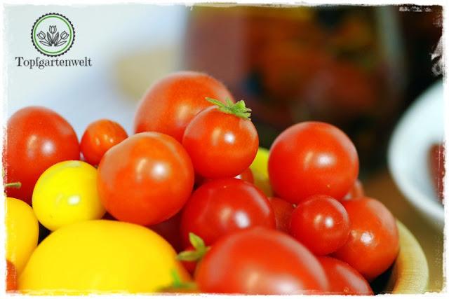 Gartenblog Topfgartenwelt Antipasti: was tun mit der ganzen Tomatenernte? Tomaten in Öl einlegen!