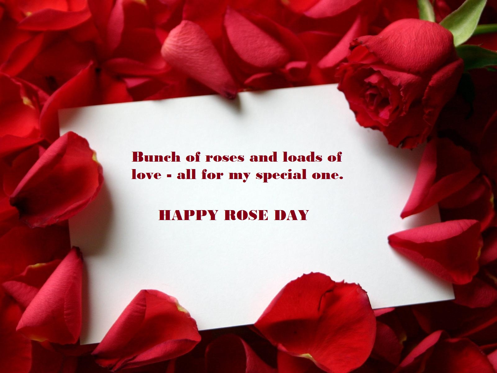 rose day msg for girlfriend
