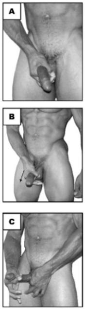 exercicios-para-aumentar-o-penis3