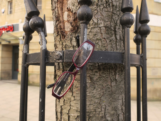 Glasses hanging on the railings of the guard around an alder tree in Halifax.