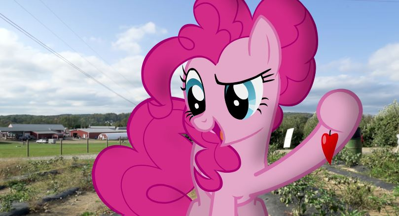 equestria daily mlp stuff ponies in real life pinkie s taste