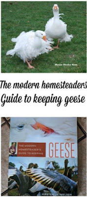 How to guide | geese