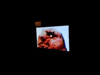 """Fábio Purper Machado, """"Então vá!"""" (videoHQescultura na exposição Idades Contemporâneas, MAC-RS, 2012)"""