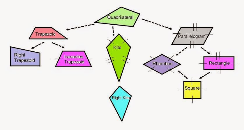 Tree diagram polygons auto electrical wiring diagram always sometimes never butterfly classrooms rh butterflyclassrooms co za polygon shapes and names chart quadrilateral tree diagram ccuart Image collections