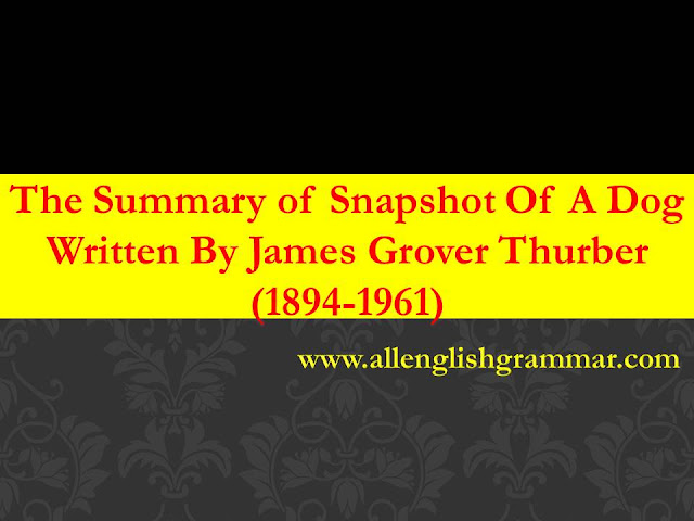 the-explanation-of-snapshot-of-a-dog-by-james-thurber