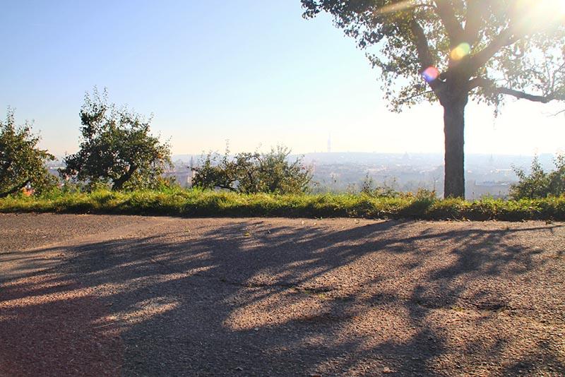 Prague Path