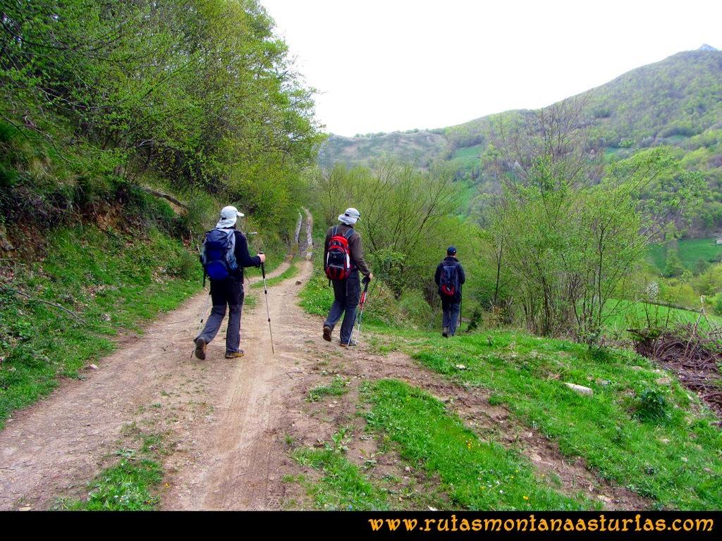 Ruta Peña Redonda: Desvío a la derecha hacia el camino del Molín