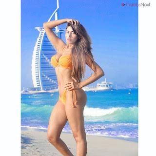 Heena Harwani Spicy Indian Bikini Model   .xyz Exclusive 005.jpg