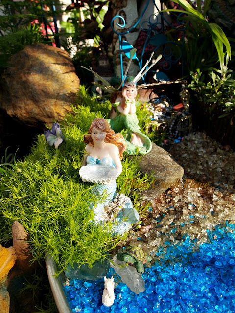 Mermaid Fairy Garden, Container Gardening,