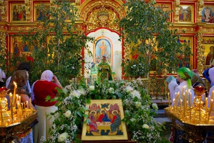 Зачем и как святить березу и травы на Троицу 2017