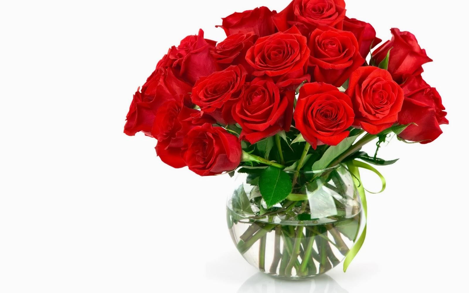 Hoa Hồng luôn thể hiện vẻ đẹp thanh cao, tinh khiết cho cuộc sống tươi đẹp. Chúng được nhiều người mệnh danh là \u201choàng hậu của những loài hoa\u201d. mời bạn đọc ...
