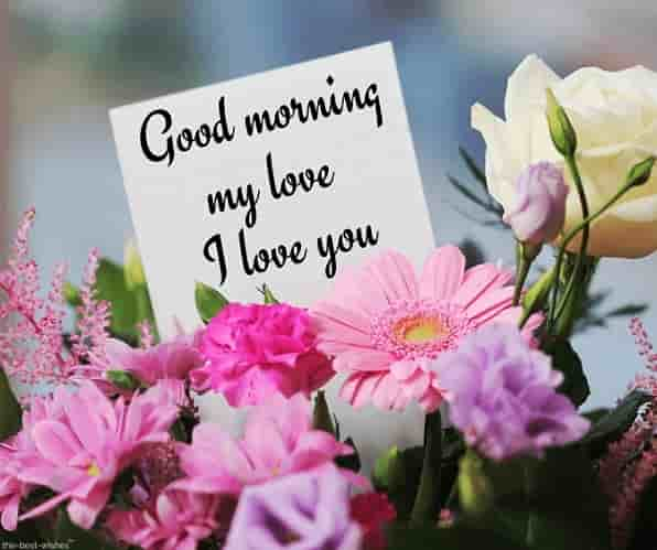 good morning my love i love you with bouquet