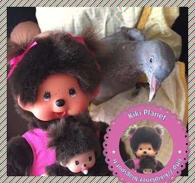 Kikinette la Monchhichi et Colombine le bébé pigeon - pigeonneau - oiseau - gavage