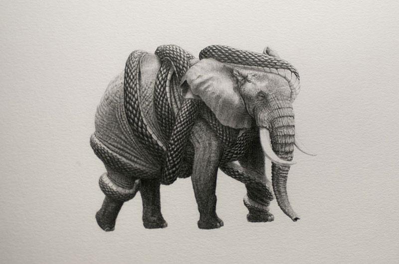 Mateo-Pizarro-01 Bestiary of Improbable Animals III: Drawings by Mateo Pizarro Design