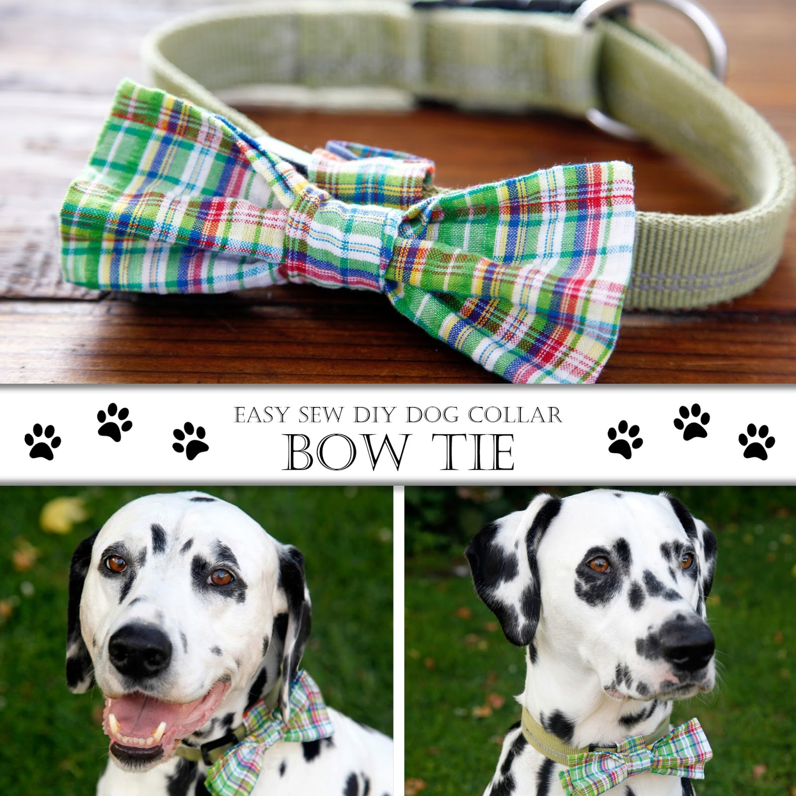 How To Make Bow Tie Collar For Dog