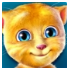 Talking Ginger V 2.3 APK for Android Free Download