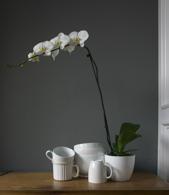 using-flowers-in-your-home-white-orchid-on-table-with-white-cups