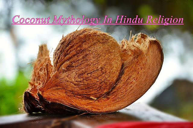 Coconut-Mythology-In-Hindu-Religion-and-Powerful-Facts