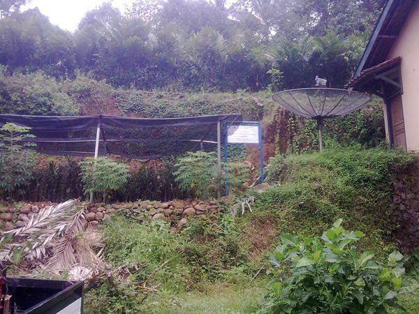 Jalur Rel Purwokerto Wonosobo