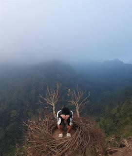 Spot Selfi Sarang Burung di Coban Bidadari Tumpang Malang City East Java