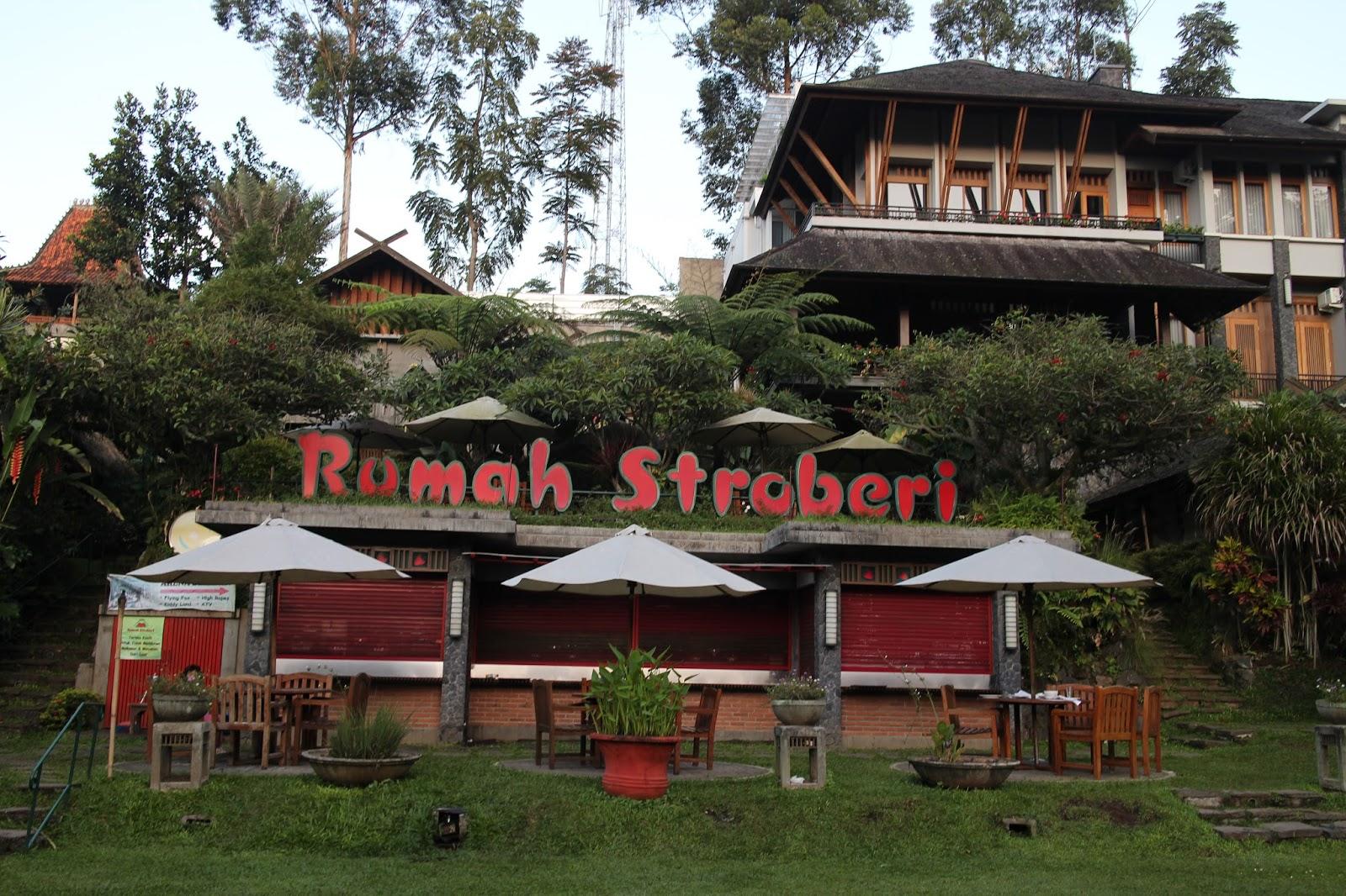 Kebun Strawberry di Bandung
