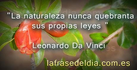 Frases famosas de Leonardo Da Vinci
