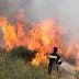Σε εξέλιξη φωτιές στην Πελοπόννησο