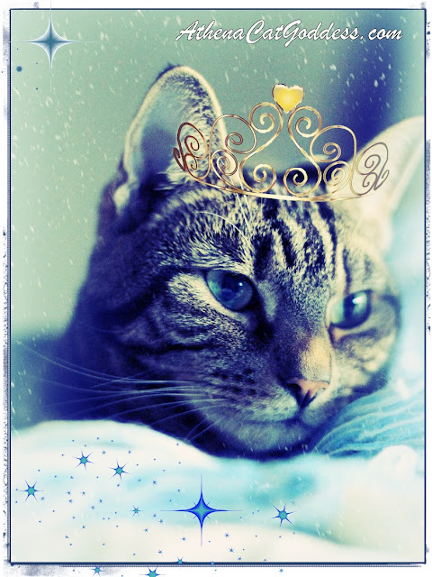 Princess Day Caturday ART