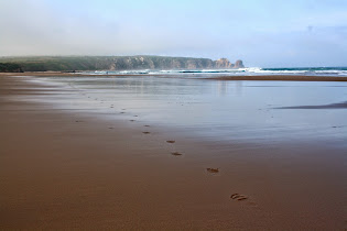 Phillip Island Beaches