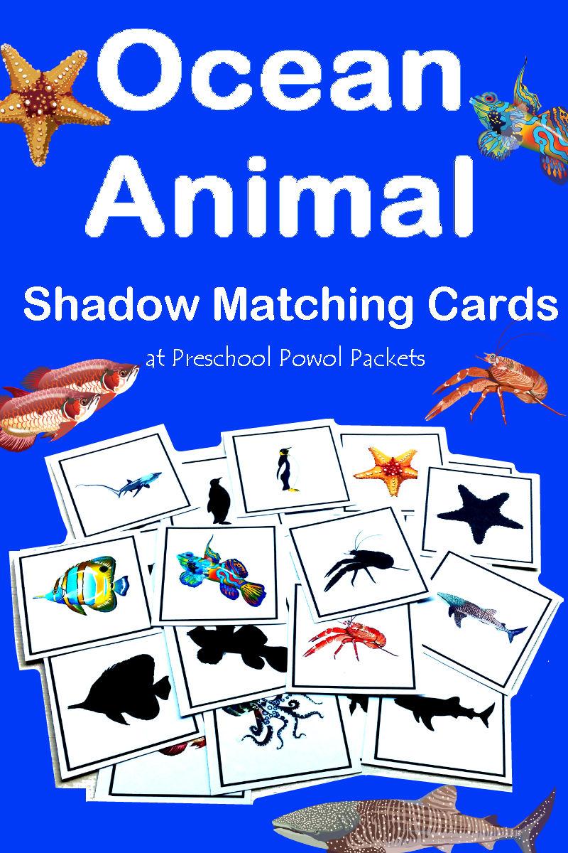 Ocean Animals Shadow Matching Cards Preschool Activity ...