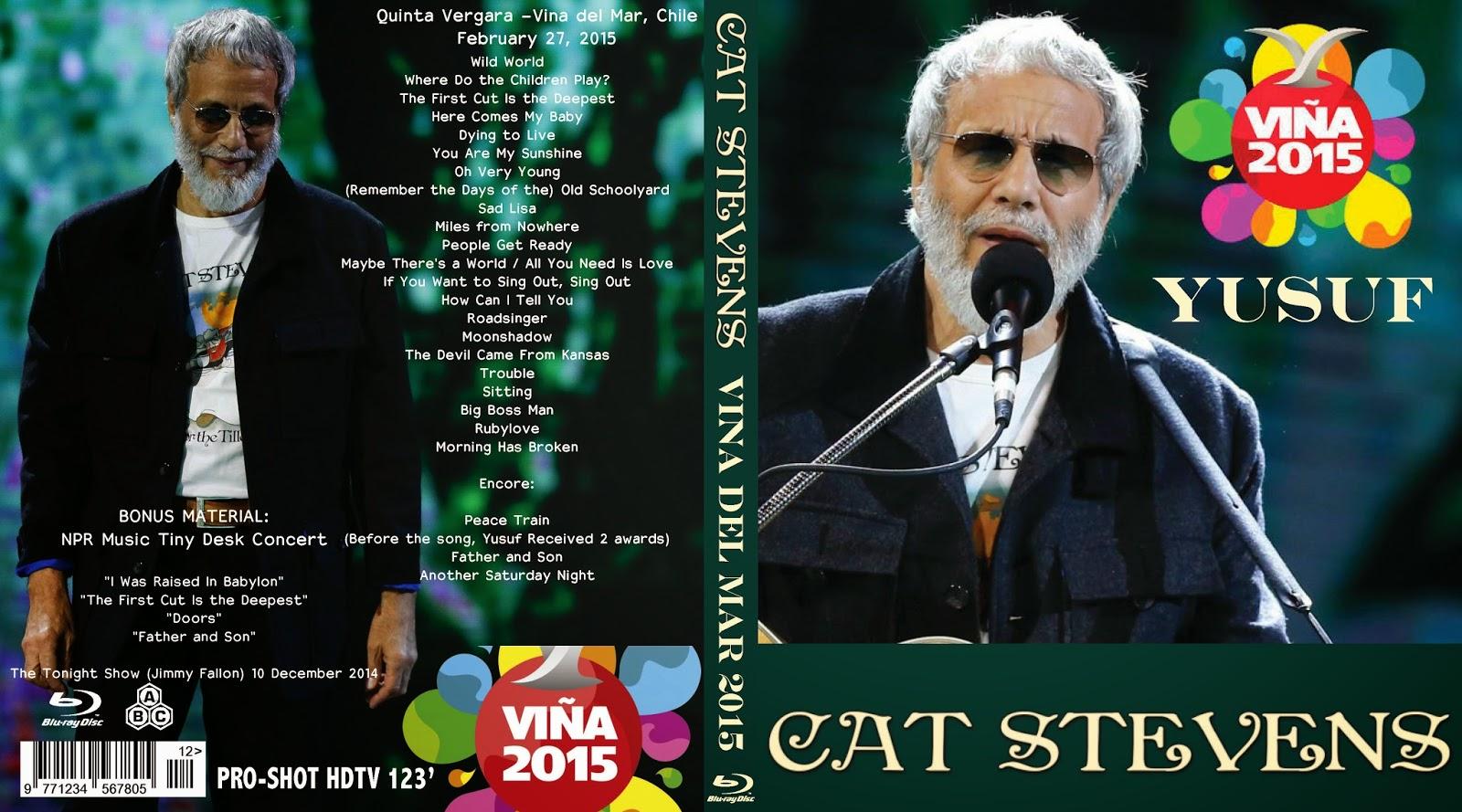 lisa cat stevens