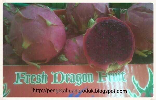 Buah Naga Merah (Dragon Red)