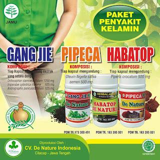 obat herbal manjur untuk gonore atau kencing nanah