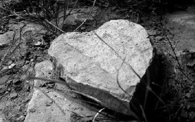 Khi nỗi buồn hóa thạch