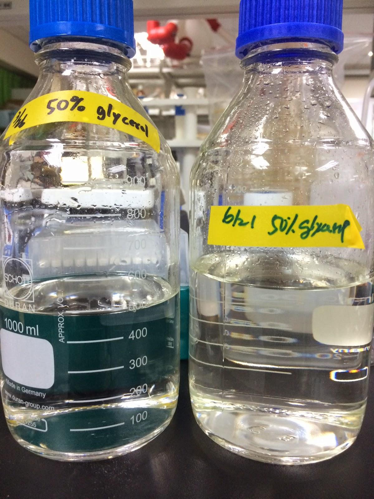 楊容的學習記錄: 0513菌種保存預備動作:接種至液體 MRS