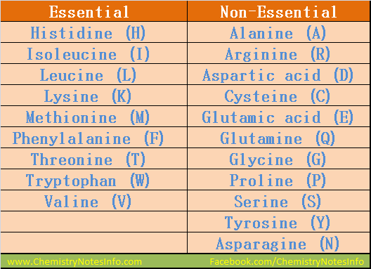 List of Essential Amino Acids and list of Non-Essential Amino Acids