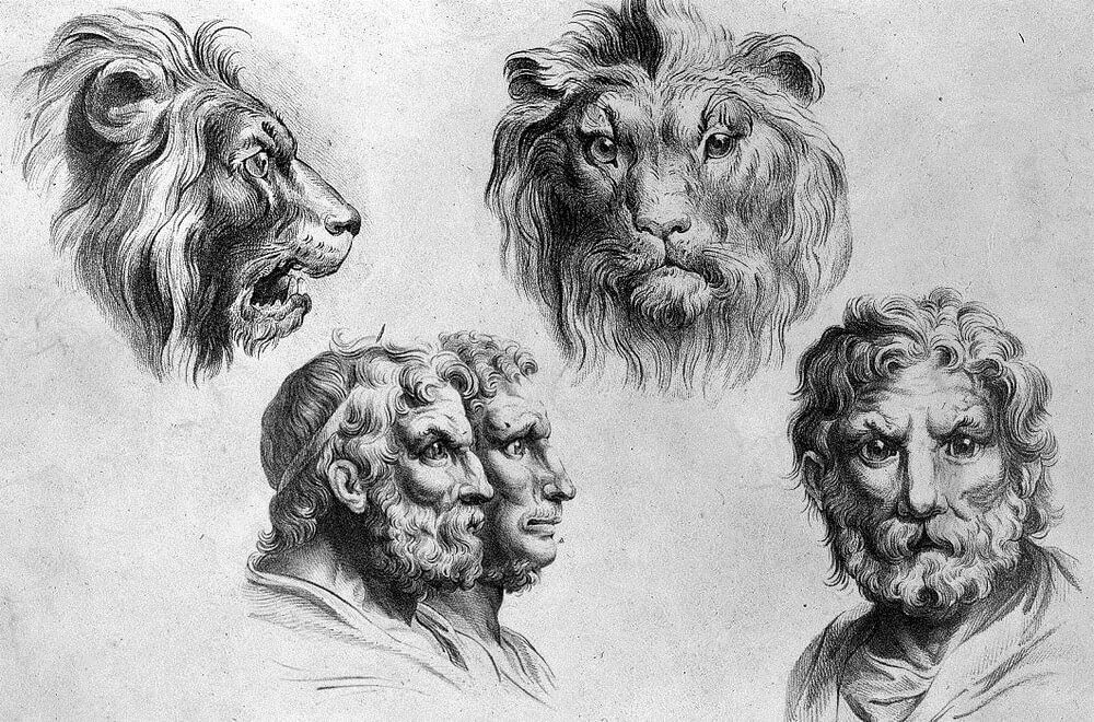 02-Lion-Animal-Transformations-Drawings-from-the-1600s-www-designstack-co