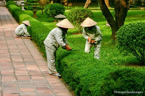 Templo literatura en Hanoi, Van Mieu
