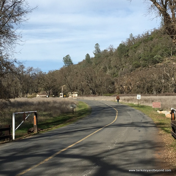 road into Clear Lake State Park in Kelseyville, California