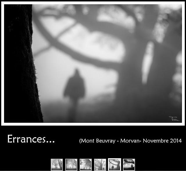 http://instantalautre.free.fr/galeries2014/art/errances/