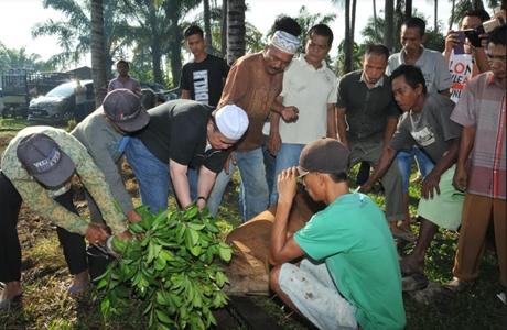 Wagub: Budaya Berkurban Membangun Solidaritas Kebersamaan