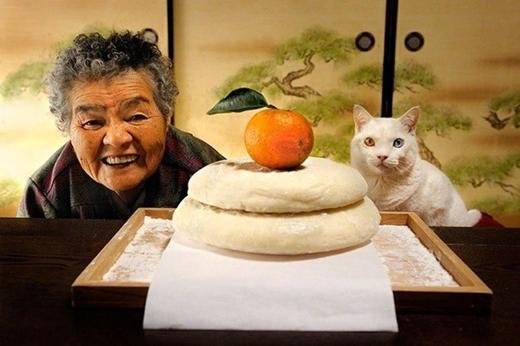 Tình bạn đẹp của chú mèo và bà cụ 80 tuổi