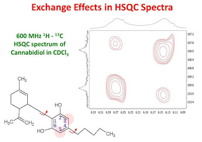 Exchange Effects in HSQC Spectra