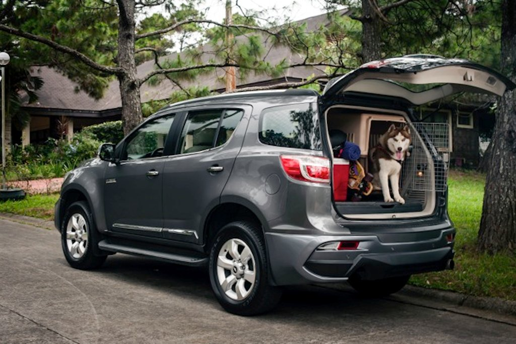 chevrolet philippines offers pet traveling tips philippine car news car reviews automotive. Black Bedroom Furniture Sets. Home Design Ideas