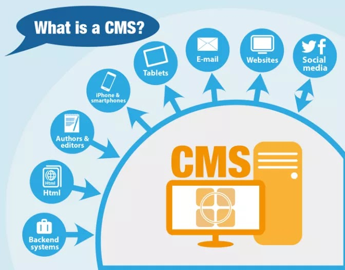 What Is Cms Which Cms Is Suitable For Your Website