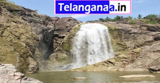 Waterfalls Gayatri in Telangana Nirmal