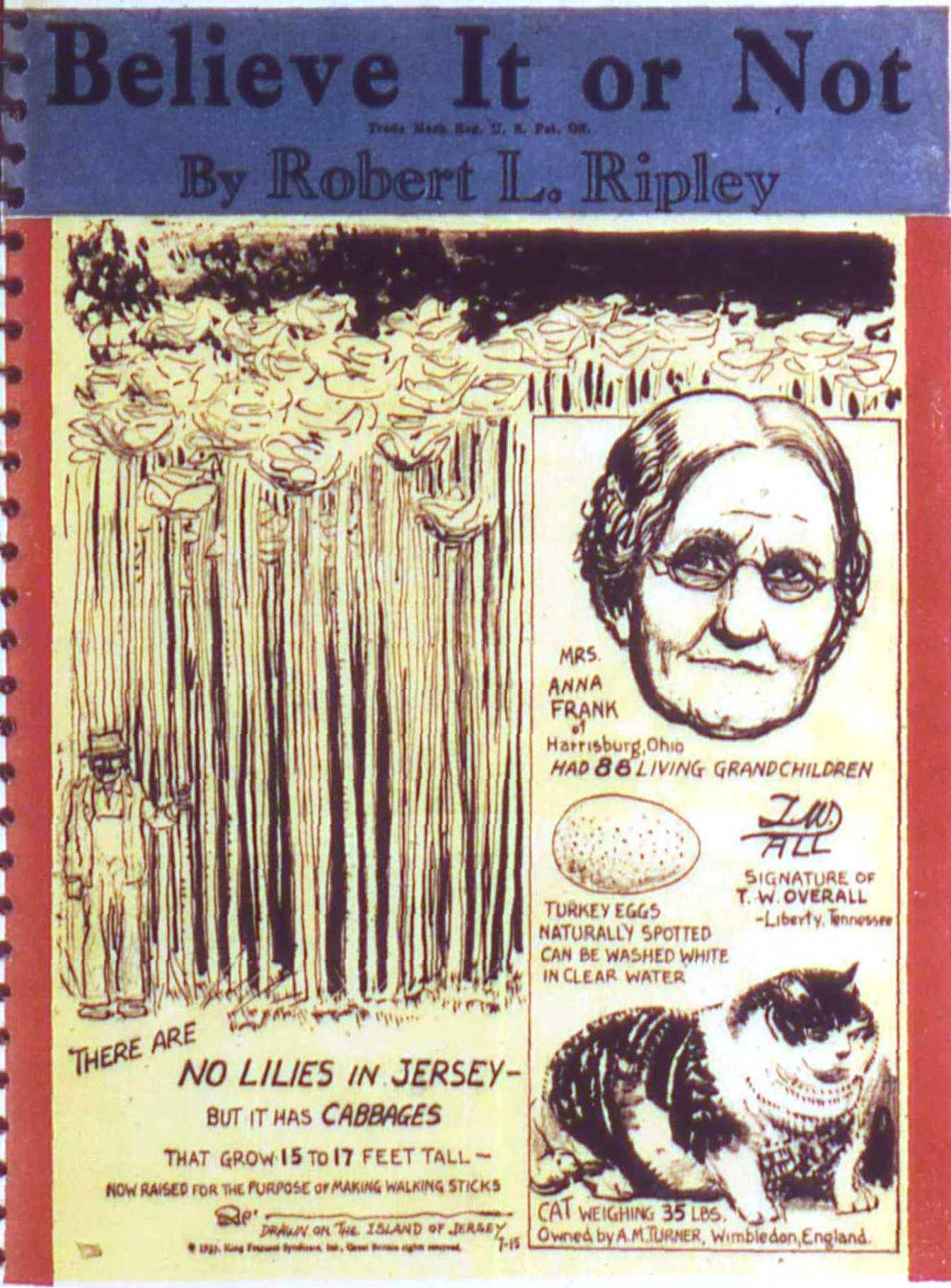 Read online All-American Comics (1939) comic -  Issue #17 - 17