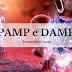 Imunologia - PAMP e DAMP (Imunidade Inata)