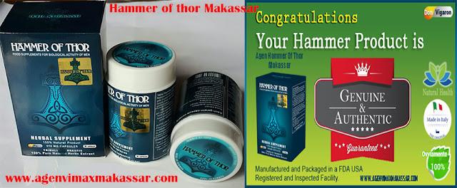 jual hammer of thor asli di jambi obat kuat di jambi forum