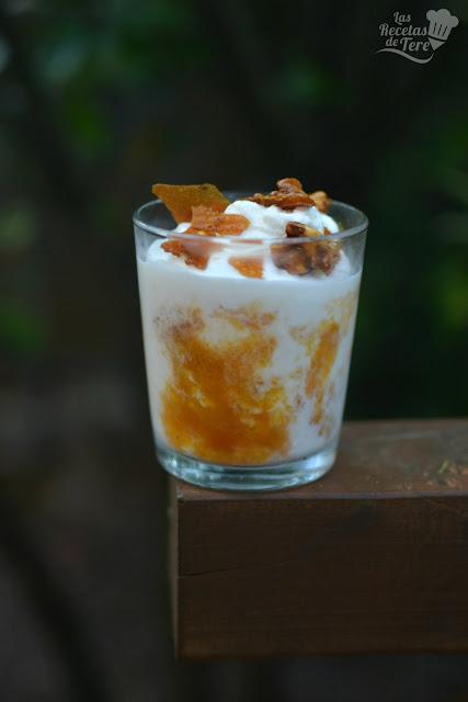 como hacer helado de yogur y coluis de albaricoque 04